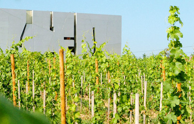 The architecture and vineyard at Loisium Wine Museum.
